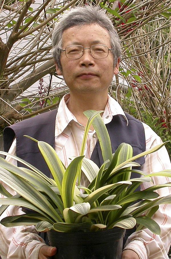 ba Nakamura and a pot of fukurin