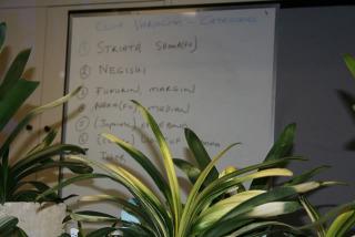 variegation-types