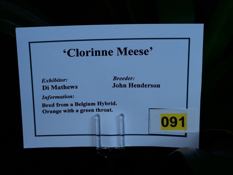 DM-clorine-meese1