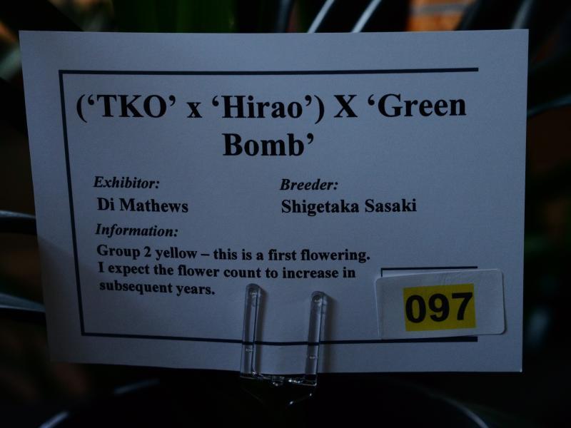 DM-green-bomb1